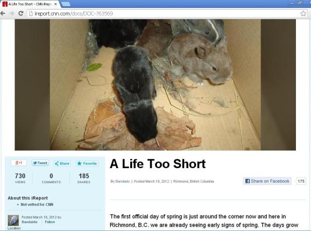 Life too short screenshot (2)