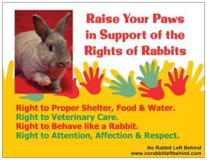 NRLB Rabbit Rights postcard front