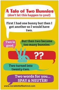 NRLB spay neuter bunnies poster