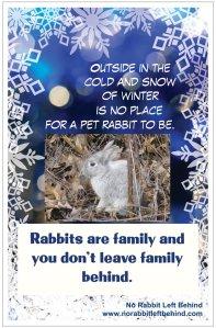 NRLB Winter
