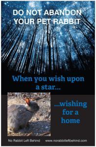 Wishing poster