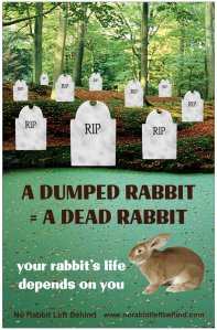 NRLB RIP poster